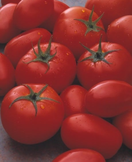 U.S. Department of Commerce's Tomato Suspension Agreement Proposal Invites Antitrust Concern