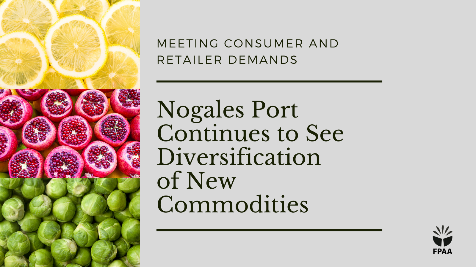 Nogales Port Continues to See Diversification of New Commodities, Reliable Supplies of Key Items